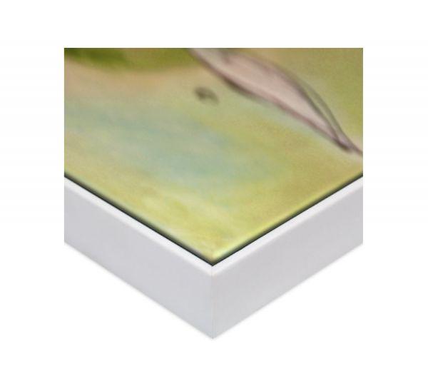 Echtholz Schattenfugenrahmen in weiß, SLIMLINE (SFR36614), passgenaue Fertigung