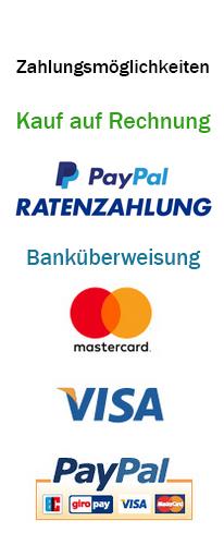 Paypal Visa Mastercard Klarna Inspire Art